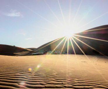 Jivamukti Yoga in der Wüste